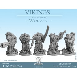 VIKINGS  WOLVES BOX